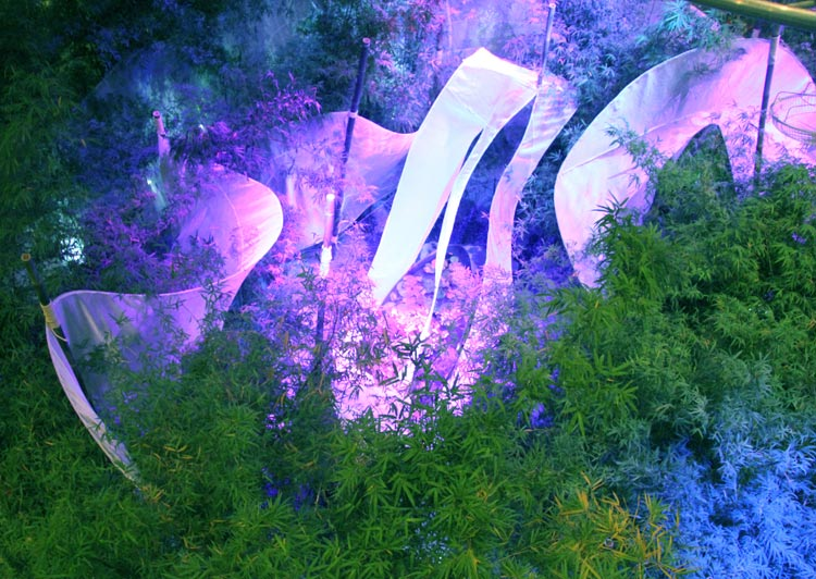 <b>秘境之旅-心灵的花园</b>
