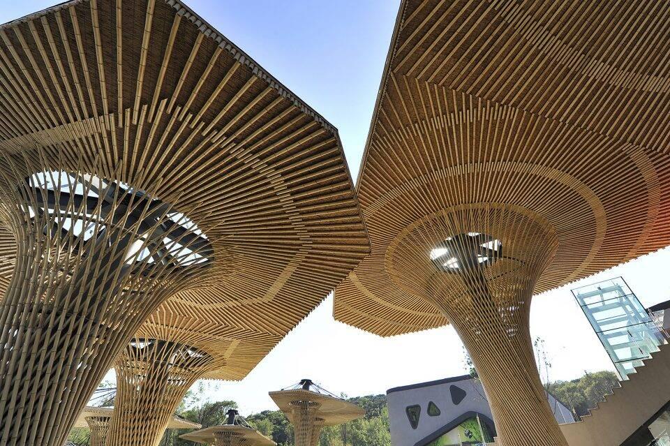 沈阳森林动物园熊猫馆